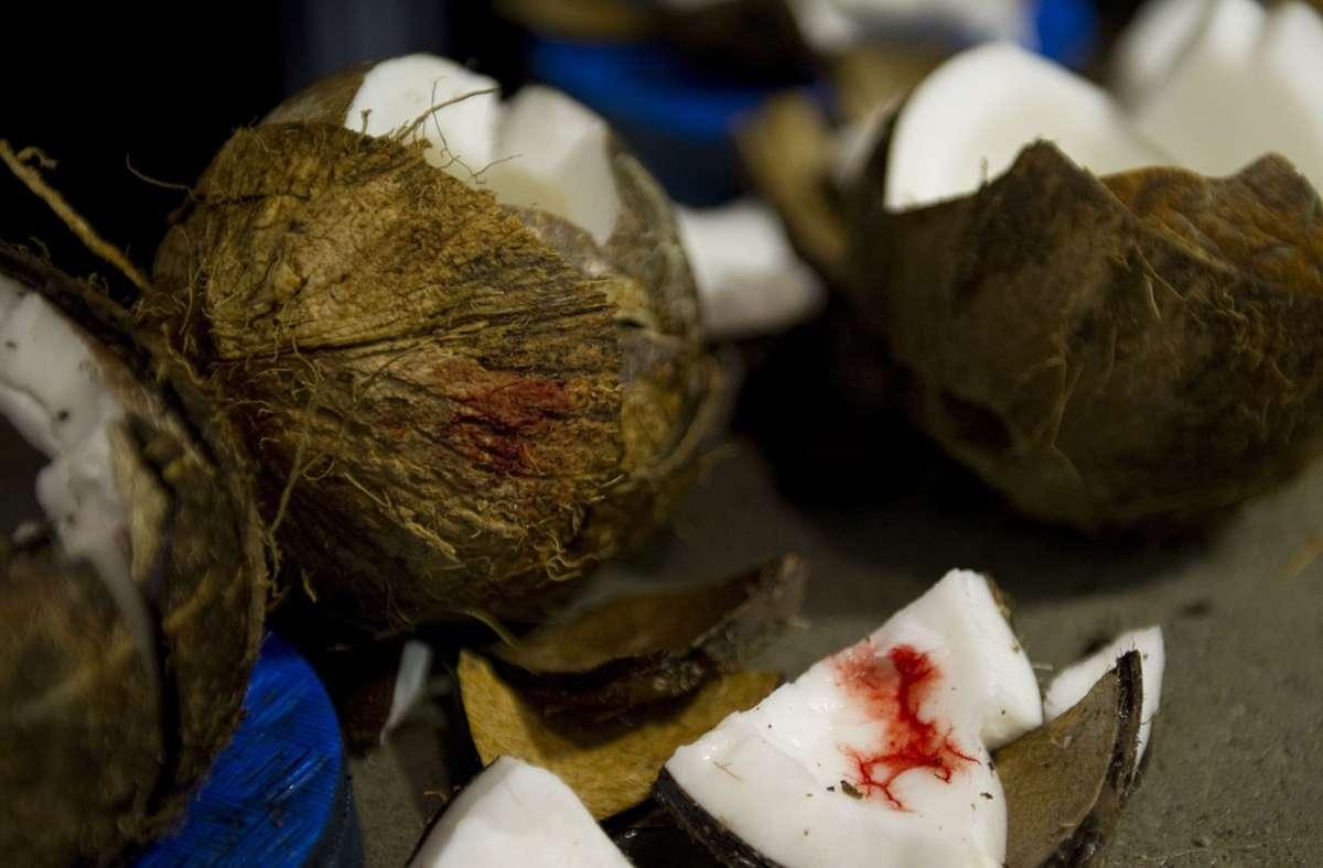 Der Mann hatte  innerhalb von 60 Sekunden 87 nebeneinander aufgereihte Kokosnüsse mit den Ellenbogen in zwei Hälften zerteilt. (Symbolbild) Foto: dpa/Axel Heimken