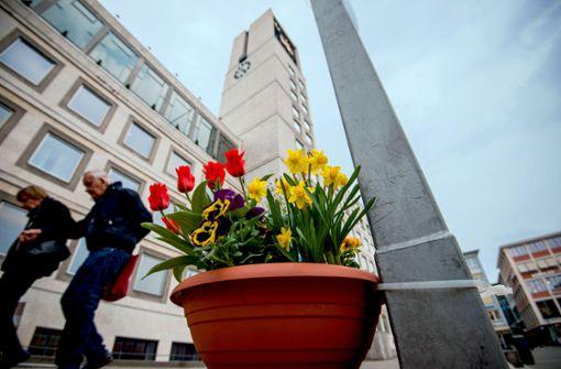 Stadtrat spendet Blumenkübel für den Marktplatz