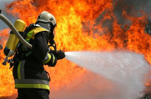 Unbekannte setzen Autos in Brand