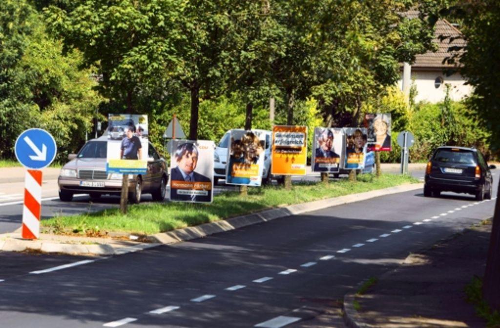 Die Plakatwälder wachsen. Die Göppinger Kandidaten der Parteien, die im Bundestag vertreten sind, zeigen wir in der folgenden Bilderstrecke. Foto: Christian Hass