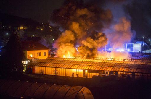 Meterhohe Flammen bei Gewächshaus-Brand