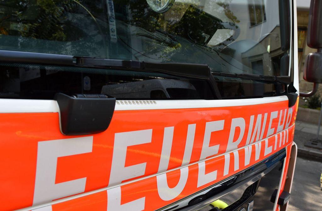 Feuerwehreinsatz in leonberg: ein trockner gerät in brand