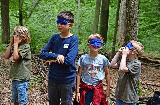 Kinder erforschen die Natur mit allen Sinnen
