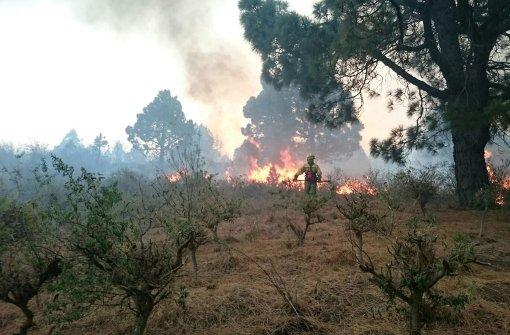 Deutscher wegen Feuers auf La Palma in U-Haft