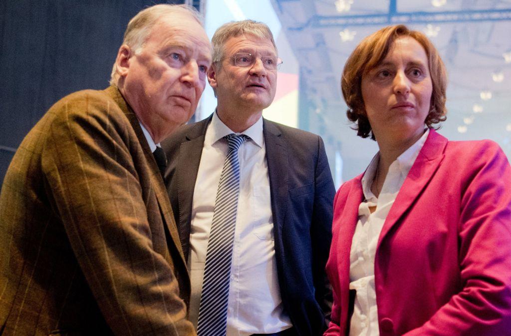 Beatrix von Storch mit den beiden AfD-Bundesvorsitzenden Alexander Gauland und Jörg Meuthen (Mitte). Alle lieben sie die Provokation. Foto: dpa