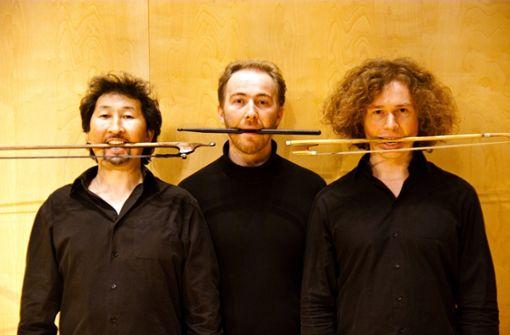 Meister exotischer Violinen