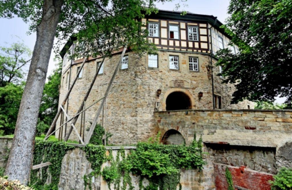 Bei den Vorarbeiten für die Sanierung des Sachsenheimer Wasserschlosses wurden unerwartet Deckenbretter aus dem 16. Jahrhundert entdeckt. Foto: factum/Granville