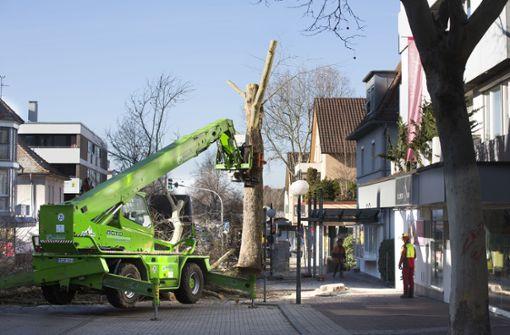 In Nellingen beginnt die heiße Bauphase