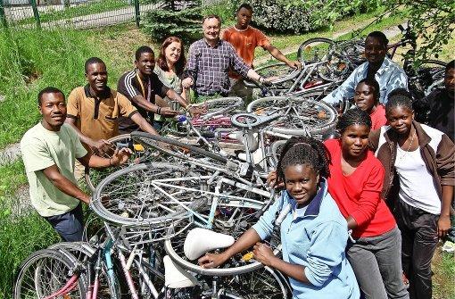 Mit dem Fahrrad zu Zebras und Antilopen