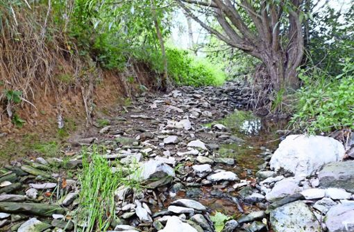 Es ist fast  kein Wasser mehr in den Flüssen