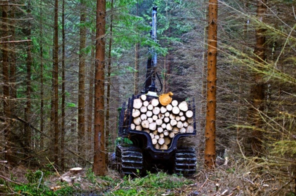 Holzernte: die Arbeit bleibt, der Vertrieb muss neu organisiert werden. Foto: dpa