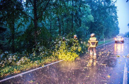 Baum stürzt auf Auto und verletzt Vierjährigen lebensgefährlich