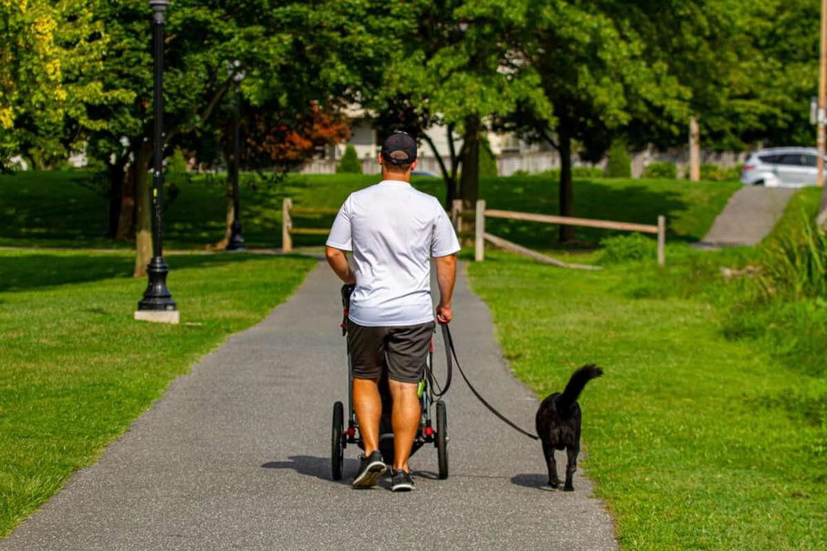 Abnehmen durch Spazieren? Foto: andbrothers / shutterstock.com