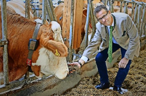 Tierschützer siegen gegen Agrarmnister