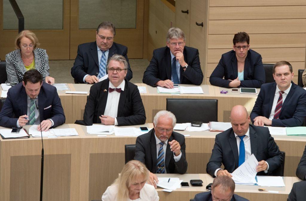 Die AfD-Abgeordneten im Stuttgarter Landtag sorgen erneut für politischen Trubel. Foto: dpa