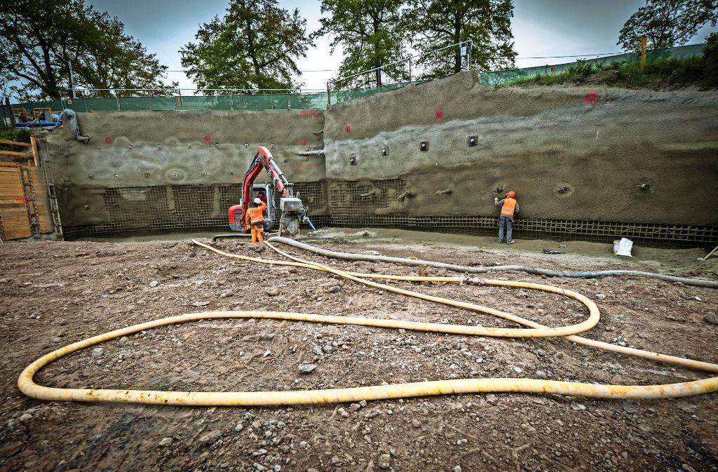 Unter den Bäumen hindurch soll der Tunnel vorgetrieben werden. Foto: Lg/Achim Zweygarth