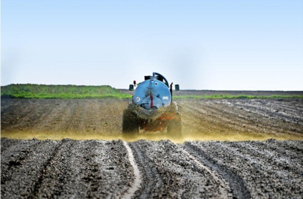 Landwirte, die Gülle ausbringen, gehören zu den Hauptverursachern der Nitratbelastung im Grundwasser. Um Beschränkungen dafür wird hart  gerungen. Foto: dapd