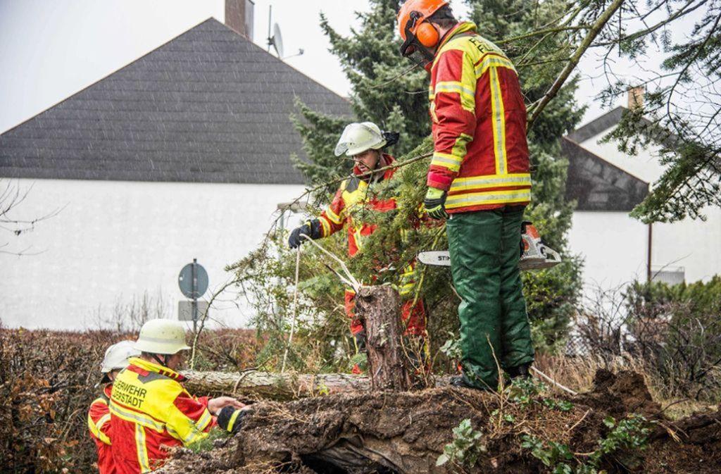Vielfach war die Feuerwehr wegen umgestürzter Bäume im Einsatz. Foto: SDMG