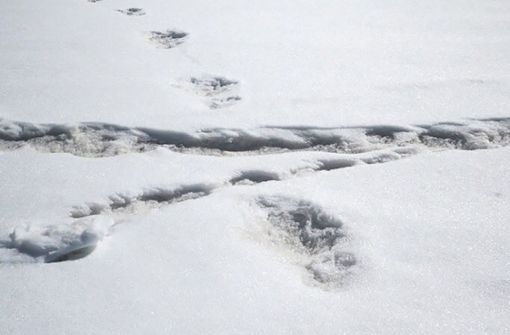Indische Armee veröffentlicht Fußabdruckbilder vom Yeti