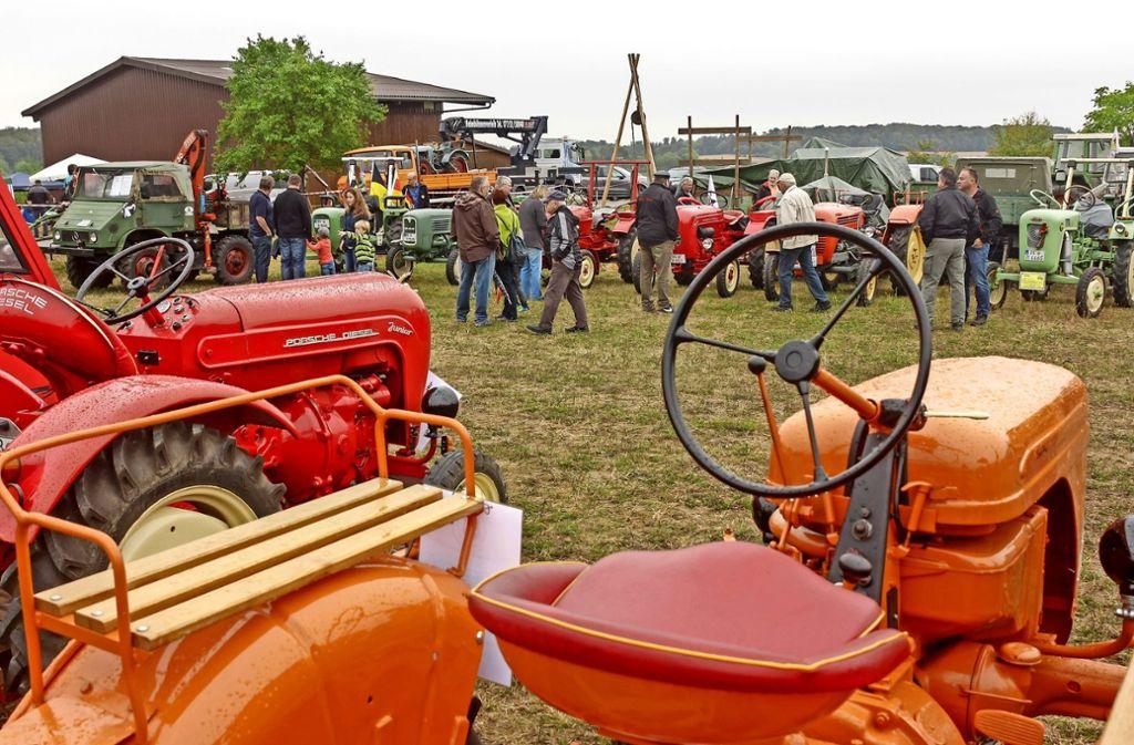 Viele verschiedene, liebevoll restaurierte Traktoren waren bei der Sichelhengetse in Rutesheim zu sehen. Foto: factum/Bach