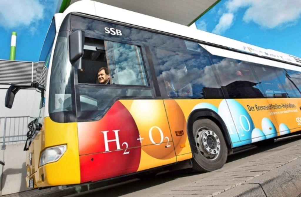 Die neuen Busse sind bunt bemalt. Foto: Michael Steinert