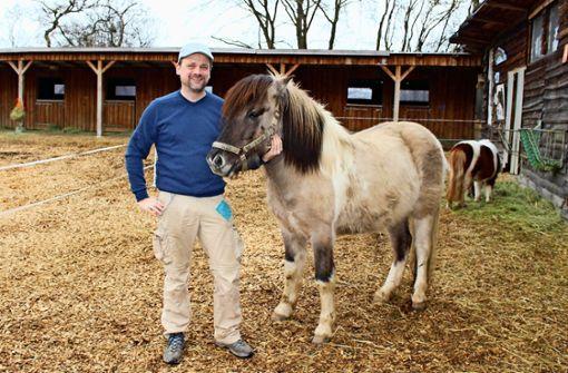 Ein neues Pony auf der Jugendfarm