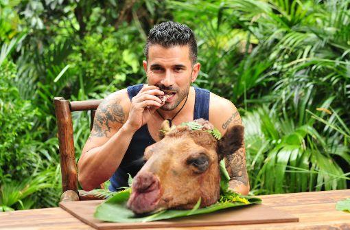 Tarzan Terenzi ist neuer König des Dschungels