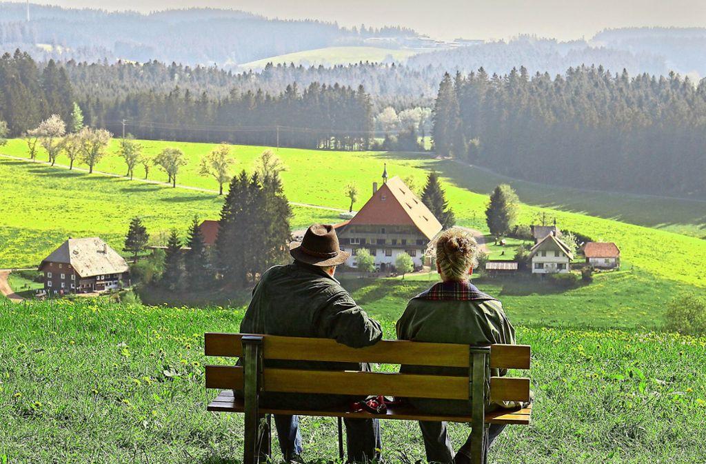"""Die Schwarzwald-Kulisse hat großen Anteil am Erfolg der """"Fallers"""" Foto: SWR/Johannes Krieg"""