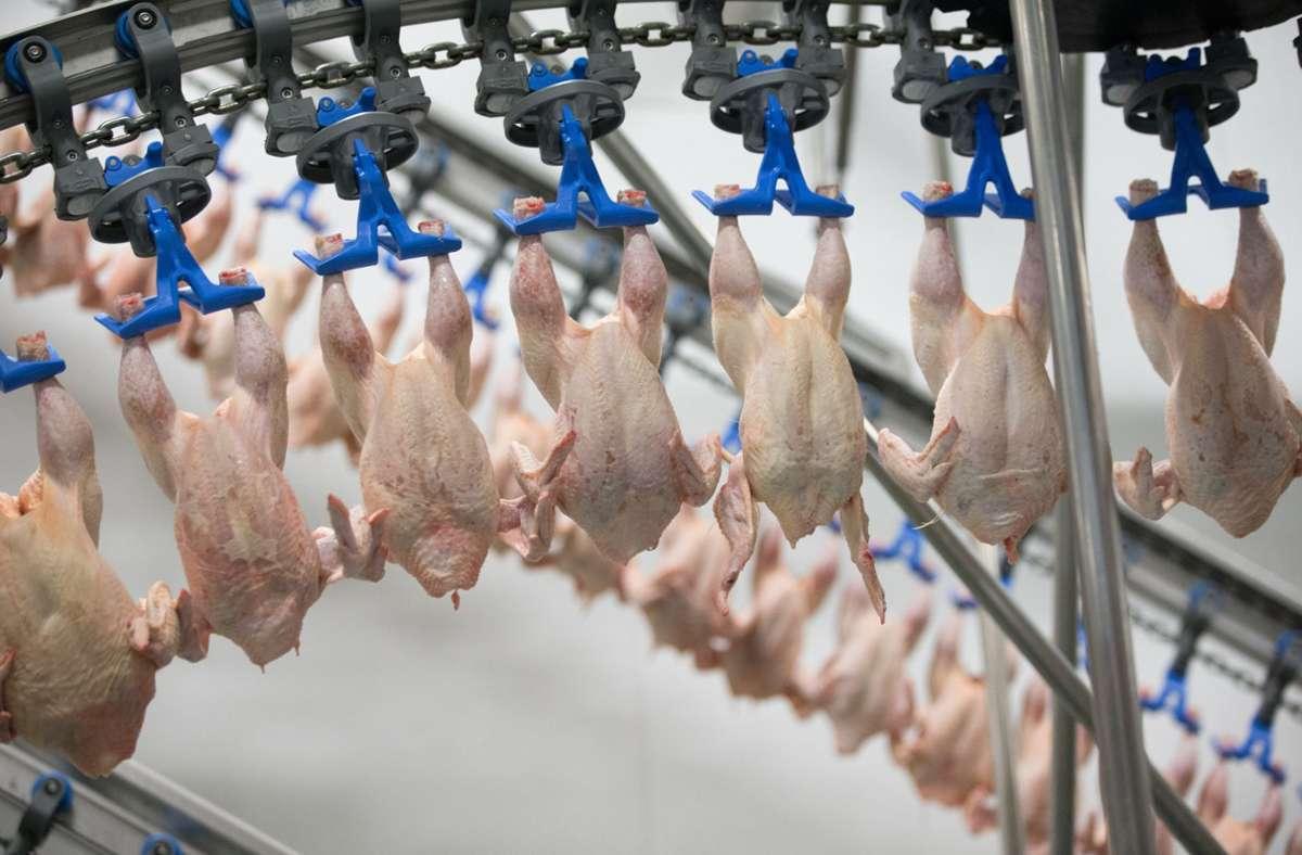 Geflügelfleisch wird in Produktionshallen des Produzenten Wiesenhof verarbeitet. (Archivfoto) Foto: dpa/Friso Gentsch