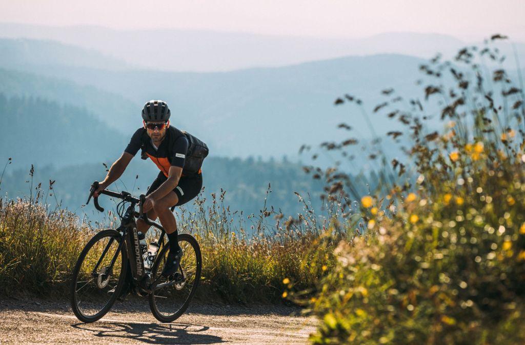 Das Fahrradtouren werden immer beliebter. Foto: dpa-tmn