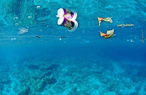 Ozeane sind in Gefahr