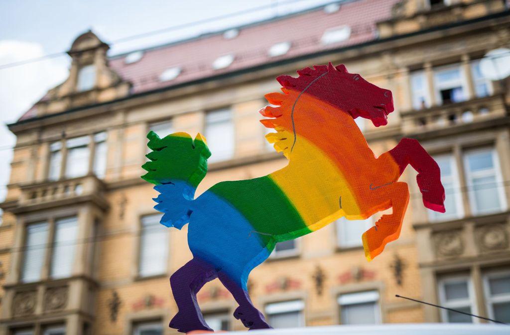 Einmal im Jahr zeigt sich die Stadt von ihrer bunten Seite. Foto: Lichtgut/Christoph Schmidt