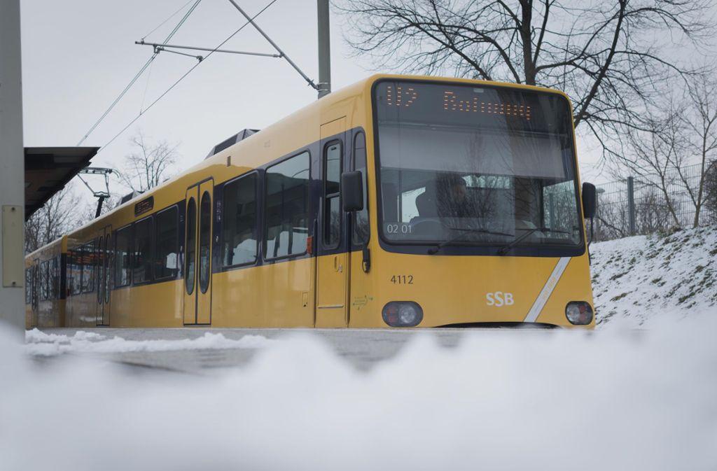 Schnee zum Frühlingsanfang – in Stuttgart ein ganz normales Bild dieses Jahr. Foto: Lichtgut/Max Kovalenko