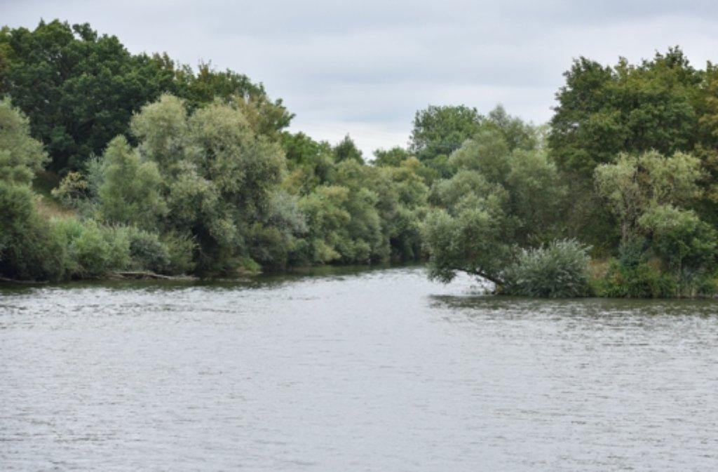 Die Flussmündung der Jagst (links) in den Neckar bei Bad Wimpfen (Baden-Württemberg. Foto: dpa