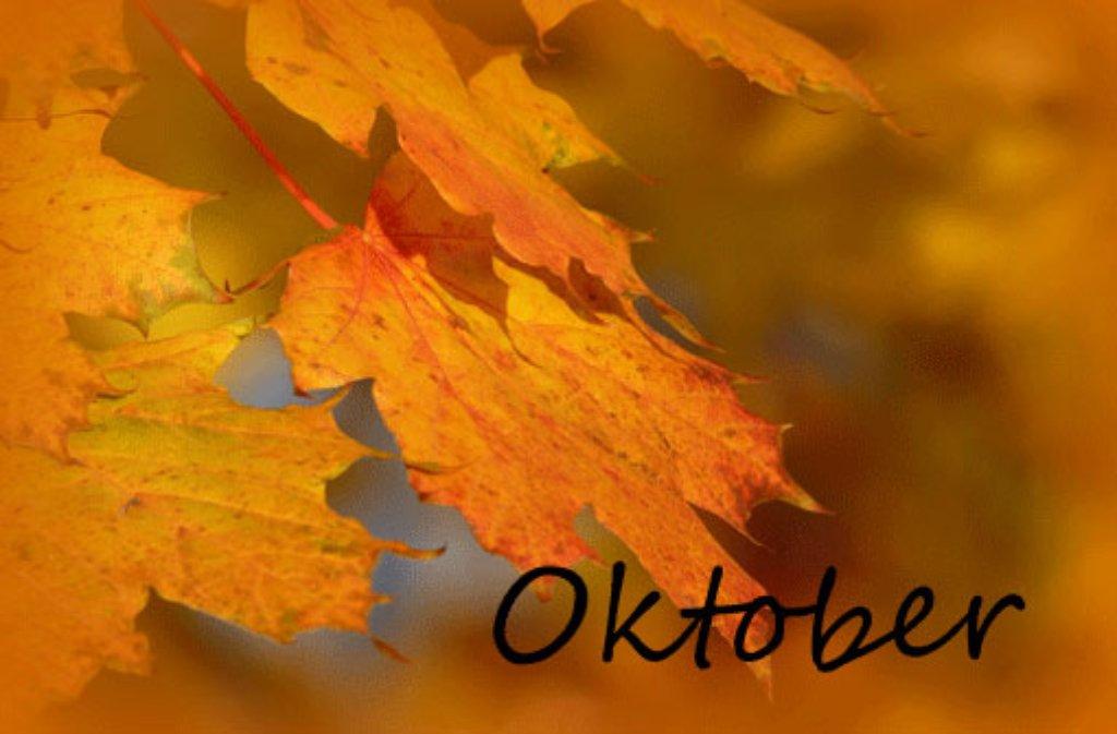 Das Jahr 2015 aus Stuttgarter Sicht - unser lokaler Jahresrückblick mit den Monaten Oktober, November und Dezember. Foto: Leserfotograf rika