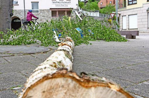 In Flacht fällt der Baum