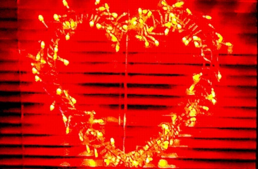 Fritz Kuhn hat keineswegs ein Herz fürs  Rotlicht. Foto: dpa