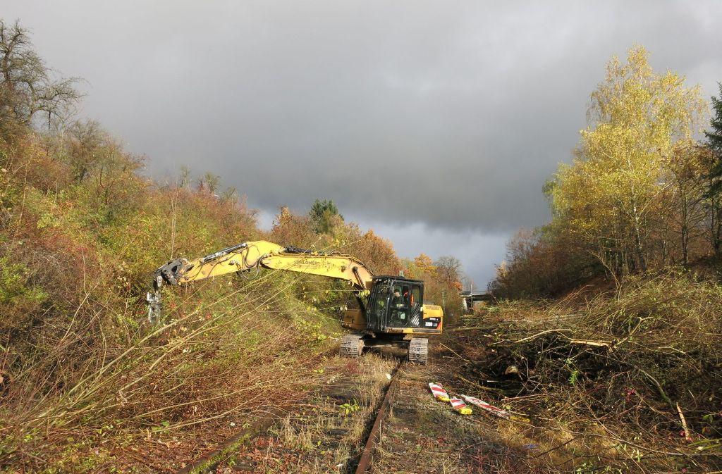 Die Bagger auf der Strecke der Hesse-Bahn können erst mal nicht weitermachen. Foto: privat