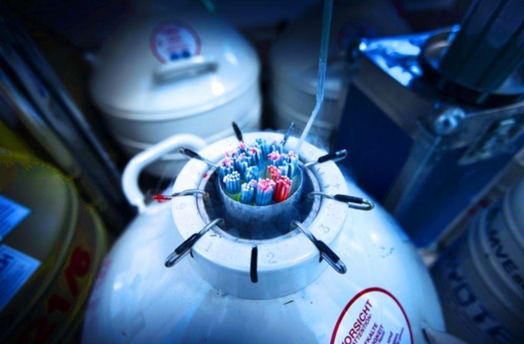 Die Proben lagern in Stahlkannen bei minus 190 Grad Celsius. Foto: Gottfried Stoppel