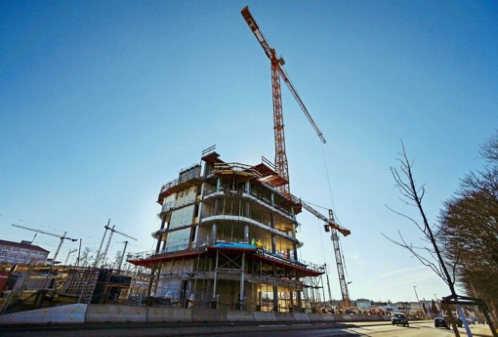Das Hochhaus Sky wächst immer weiter. Der BUND kritisiert jedoch, dass durch die Baustelle streng geschützte Zauneidechsen vernichtet wurden. Foto: factum/Granville