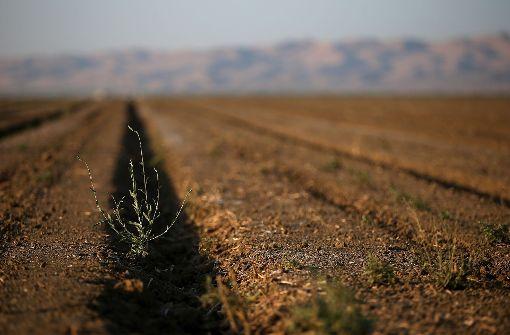 Spitzenforscher wollen die Dürren beherrschen