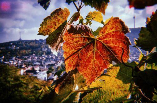 Die schönsten Herbst-Routen durch den Kessel