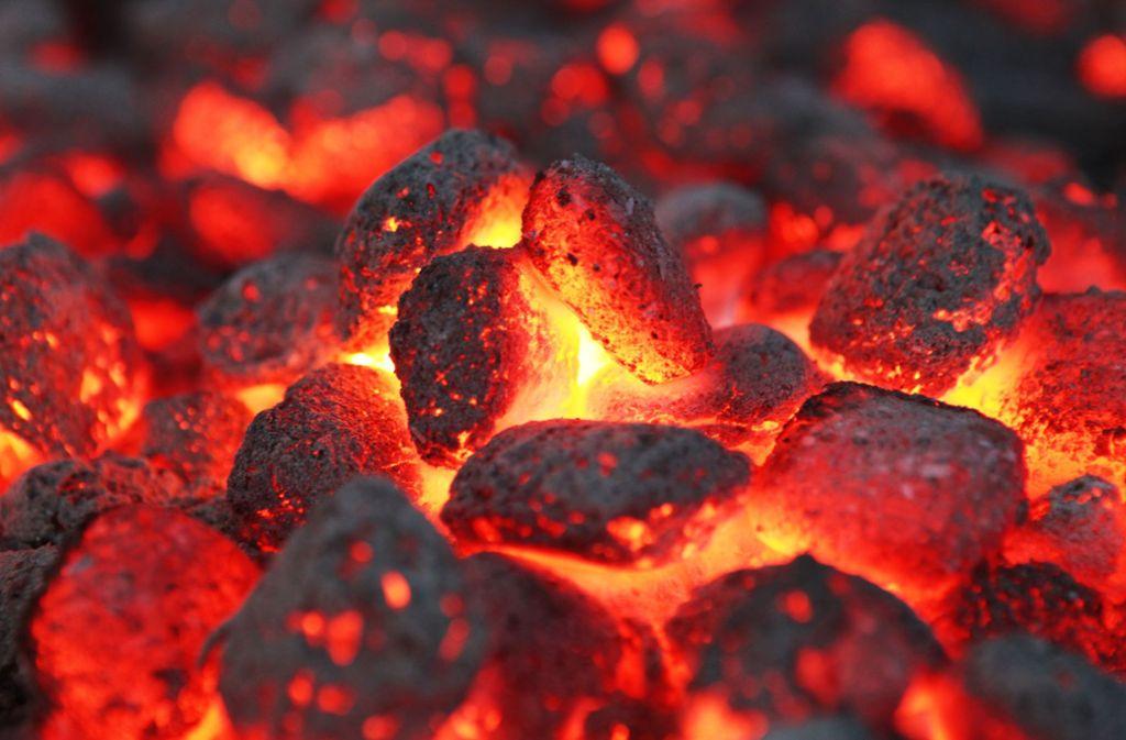 Grillkohle hat den Papiercontainer in Brand gesetzt (Symbolbild). Foto: Fotolia