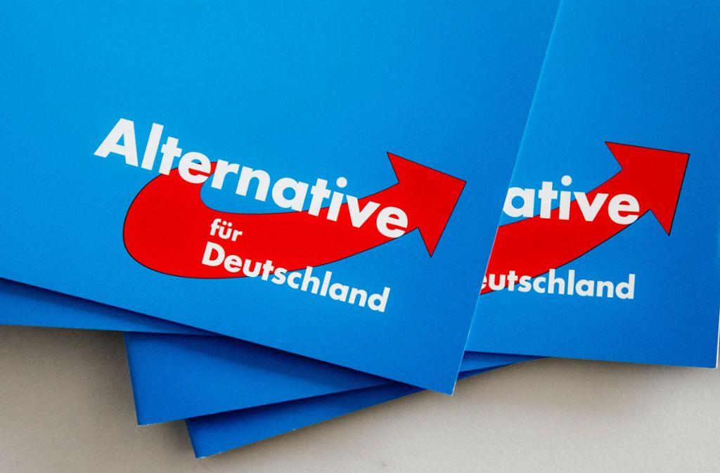 Der Fall Gedeon sorgt in der AfD-Fraktion im Landtag weiter für Wirbel. Nun hat der Abgeordnete Widenmeyer sein Mandat überraschend niedergelegt. Foto: dpa