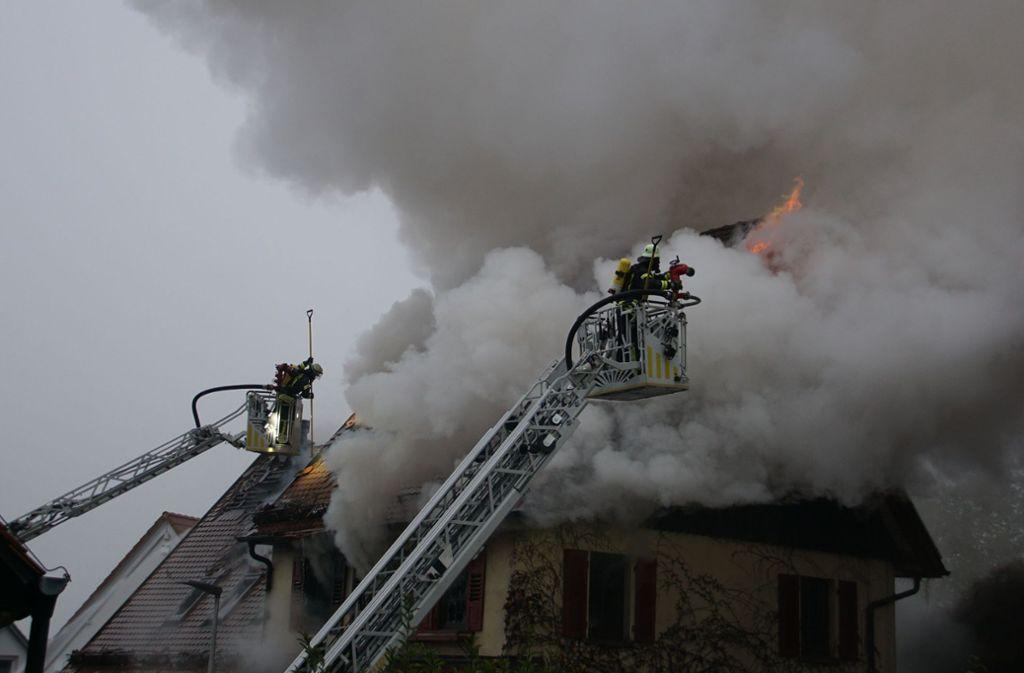 Bei dem Brand in Freiberg-Geisingen sind wohl zwei Hunde gestorben. Foto:
