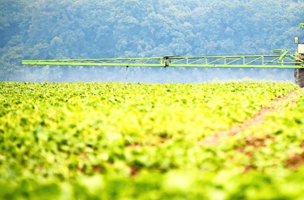 Glyphosat ist die Hauptkomponente in vielen Breitbandherbiziden. Entwickelt wurde das Mittel in den 70er Jahren vom US-Konzern Monsanto. Foto: dpa