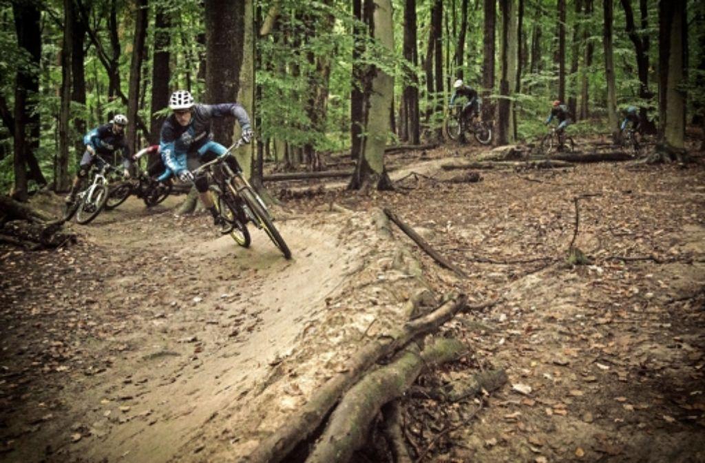 Die Downhiller haben eigene Steilkurven in den Wald gebaut. Foto: Fabian Rapp