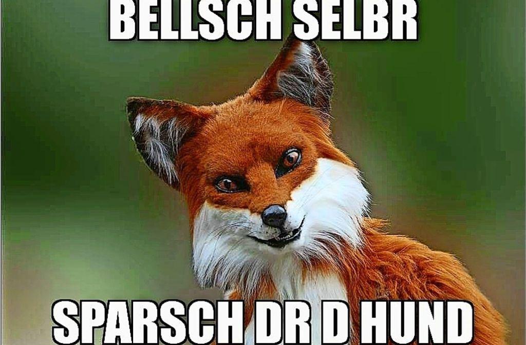 """Der Sparfuchs ist ein sogenanntes """"Advice Animal""""  und gibt originelle, schwäbische Tipps zum Geld sparen. Foto: Memes uff schwäbisch (Facebook)"""