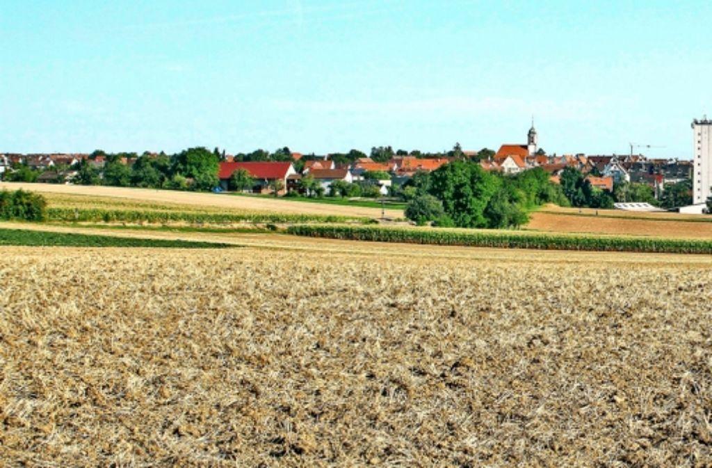 Die neue Straße soll südlich um den Ditzinger Stadtteil Heimerdingen herumführen. Foto: factum/Bach