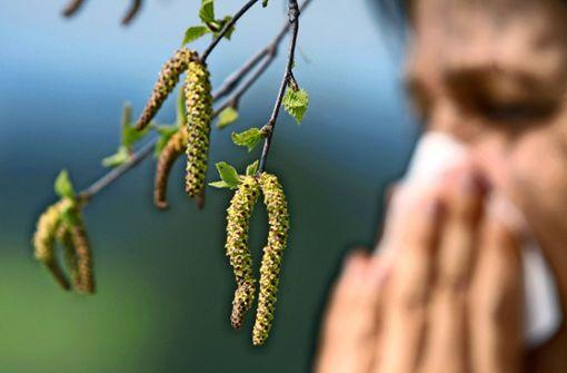 Allergien: Wenn die Pollen nicht nur im Hals kratzen